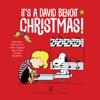 David Benoit - It's a David Benoit Christmas!  artwork