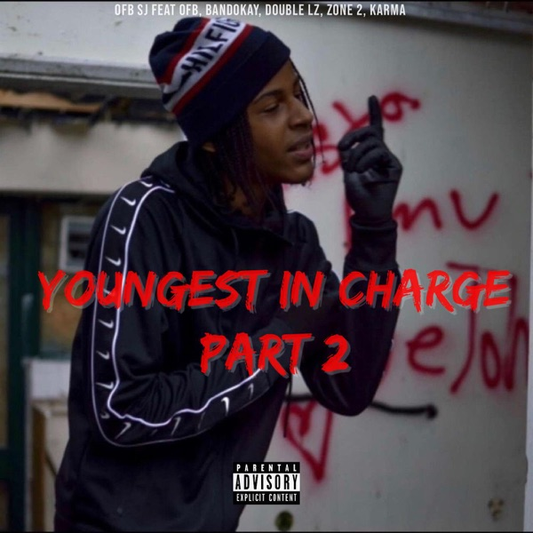 Youngest In Charge, Pt 2 (feat. OFB, Zone 2, Bandokay, Double Lz & Karma) - Single