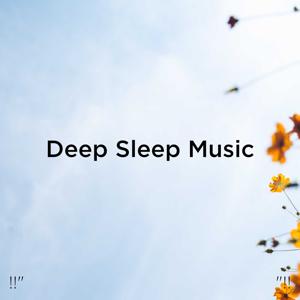 """Binaural Beats Sleep & Deep Sleep Music Collective - !!"""" Deep Sleep Music """"!!"""
