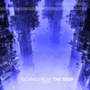 Techno from the Deep, Vol. 12