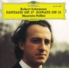 Schumann: Sonata for Piano, Op. 11 - Fantasia, Op. 17 ジャケット写真