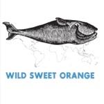 Wild Sweet Orange - Be Careful (What You Want)