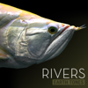 Earth Tones: Rivers - Various Artists
