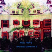 Ariel Pink's Haunted Graffiti - Interesting Results