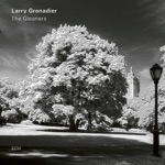 Larry Grenadier - Lovelair