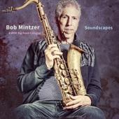 Bob Mintzer/WDR Big Band Cologne - Whack