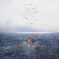 Album Wonder - Shawn Mendes