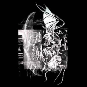 venom & cerebro - venom & cerebro - EP