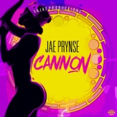 Cannon artwork
