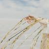 Sophie Blair - Close Quarters bild