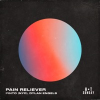Pinto - Pain Reliever