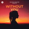Wasted Penguinz & Firelite - Without You (Extended Mix) artwork