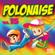 Verschillende artiesten - Polonaise, Vol. 15 (2019)