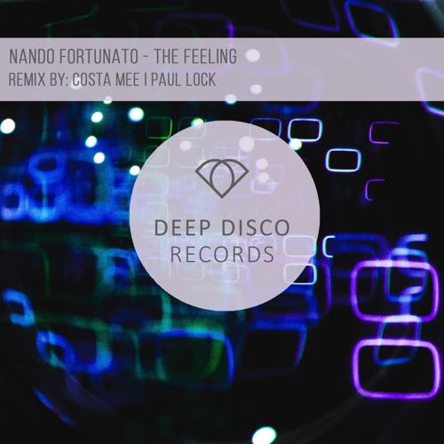 Nando Fortunato - The Feeling Image