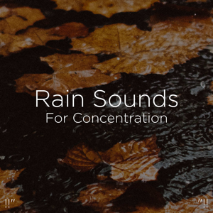 "Rain Sounds & Rain for Deep Sleep - !!"" Rain Sounds for Concentration ""!!"