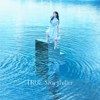 TRUE - Storyteller アートワーク