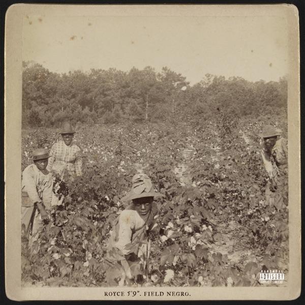 Field Negro - Single