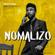 Nomalizo (feat. Dj Catzico) - Lindough