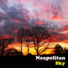 Neapolitan Sky - Single, The Avett Brothers