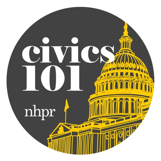 Cover image of Civics 101