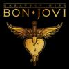 Bon Jovi - Greatest Hits  artwork