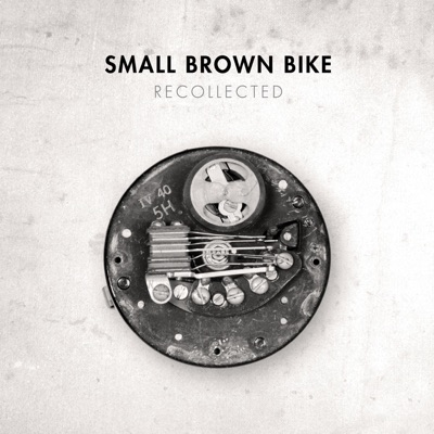 Recollected - Small Brown Bike