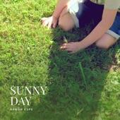Aaron Espe - Sunny Day