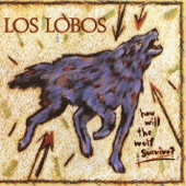 Los Lobos - Lil' King of Everything