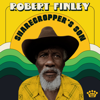 Robert Finley - Souled Out On You  artwork