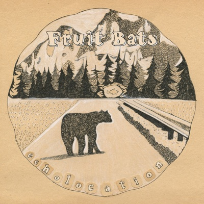 Echolocation - Fruit Bats