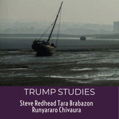 Trump Studies: An Intellectual Guide to Why Citizens Vote Against Their Interests