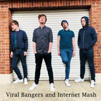 Michael Fry - Viral Bangers and Internet Mash artwork