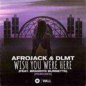 Afrojack - Wish You Were Here (feat. Brandyn Burnette) [Karim Meknassi Remix]