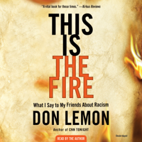 Don Lemon - This Is the Fire artwork