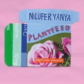 Nilufer Yanya - The Florist