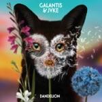 songs like Dandelion