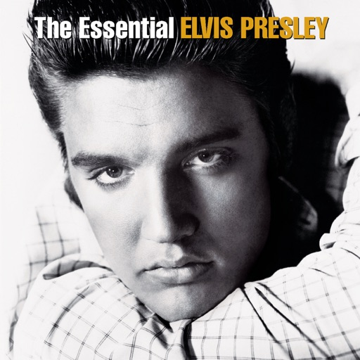 Art for Are You Lonesome Tonight? by Elvis Presley