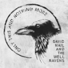 David Nail and The Well Ravens - Only This and Nothing More  artwork