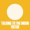 Talking To The Moon Tiktok Remix - Eduardo XD mp3