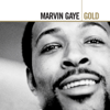 Marvin Gaye & Tammi Terrell - Ain't No Mountain High Enough artwork