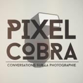 Pixel Cobra