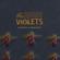 EUROPESE OMROEP | B-Sides & Rarities - The High Violets