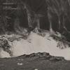 The Year of Hibernation Bonus Tracks - Single