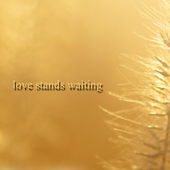 Love Stands Waiting