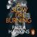 Paula Hawkins - A Slow Fire Burning