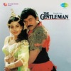 The Gentleman (Original Motion Picture Soundtrack)