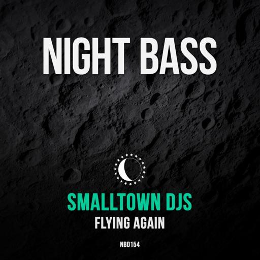 Flying Again - Single by Smalltown DJs