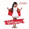 Zamo - Njengami artwork