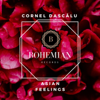 Cornel Dascalu - Asian Feelings artwork