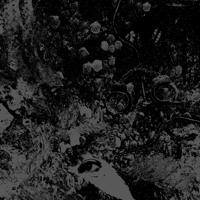 Unearthly Trance - Mechanism Error artwork